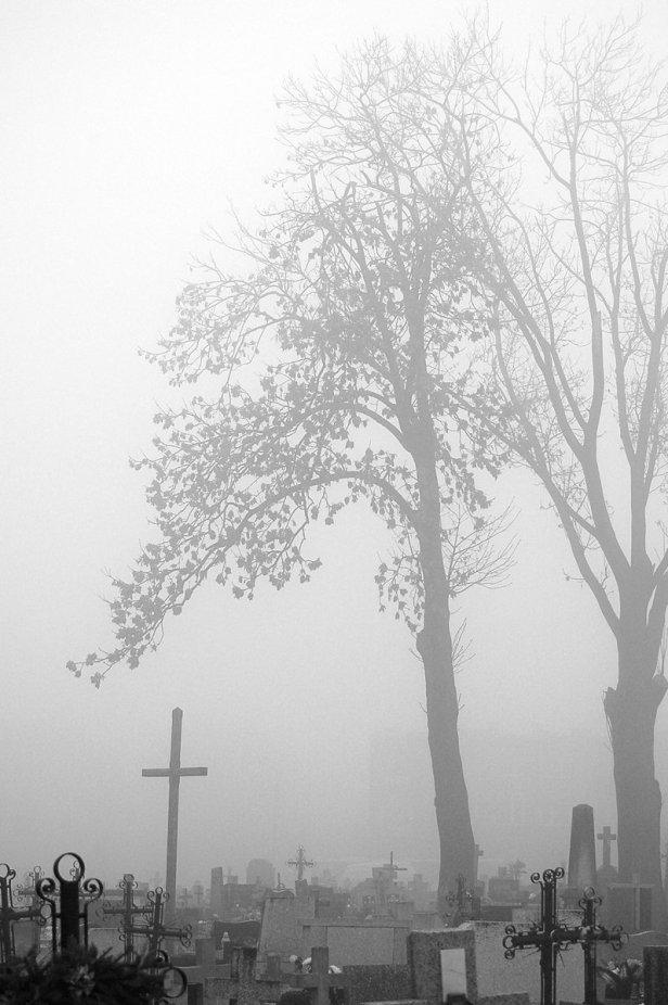 Fonte: http://commons.wikimedia.org/wiki/File:Cemetery_in_fog_(335717947).jpg